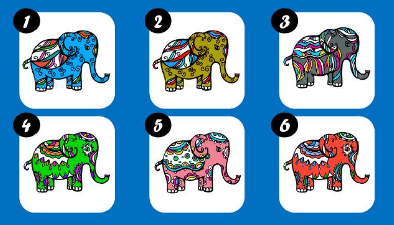 Válaszd ki, melyik elefánt hozzon neked szerencsét!