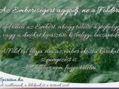 Spiritan Üzenet: Ne a Földért aggódj