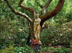 A nők életében jelentkező 13 istennői minta és árnyék aspektus III.
