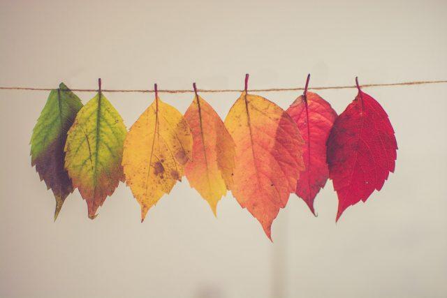 A színek spirituális értelme és szimbolikája - az alapok